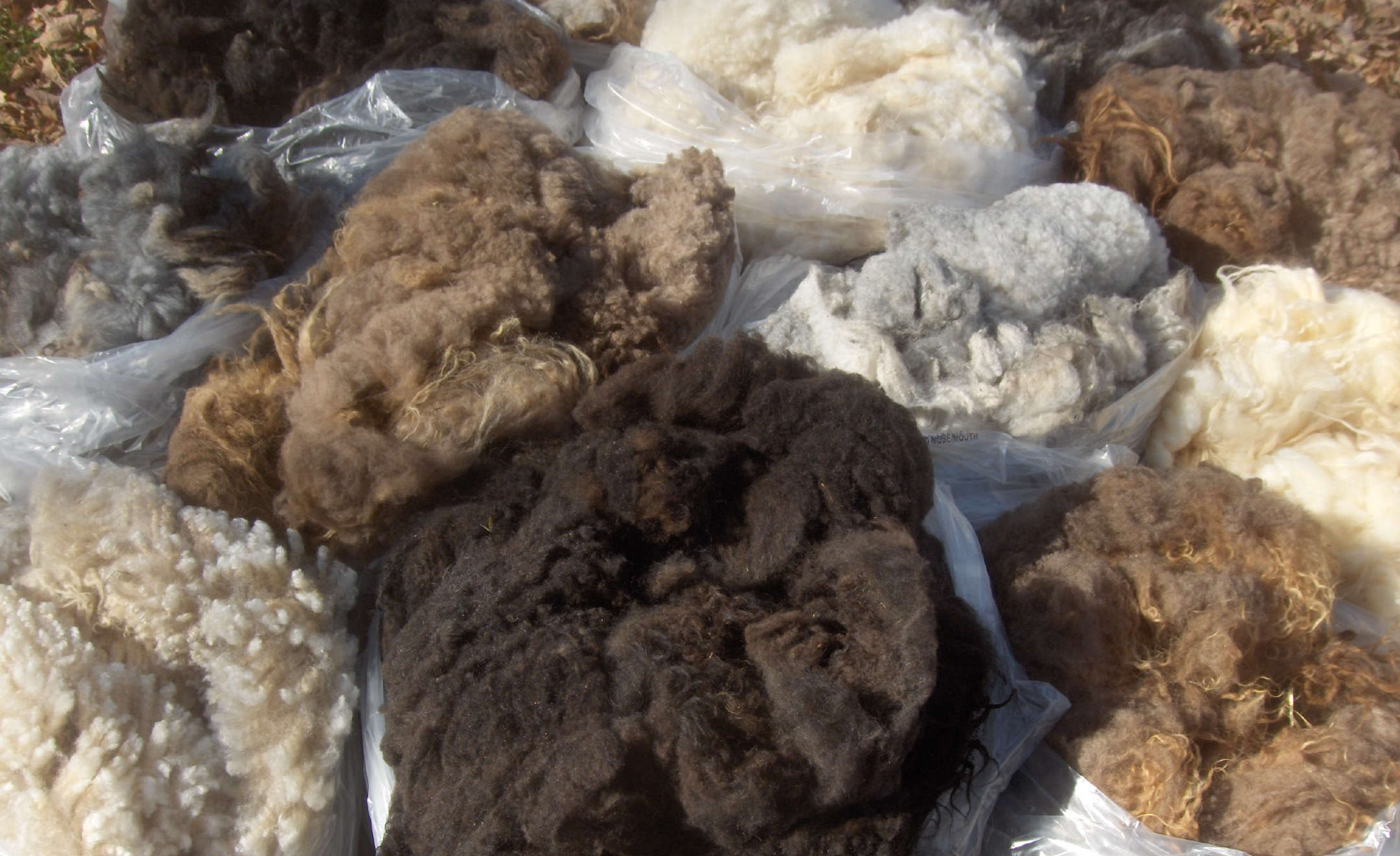 a sample of our natural fleeces
