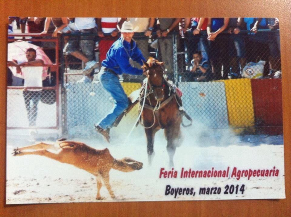 stewart roping rodeo.jpg