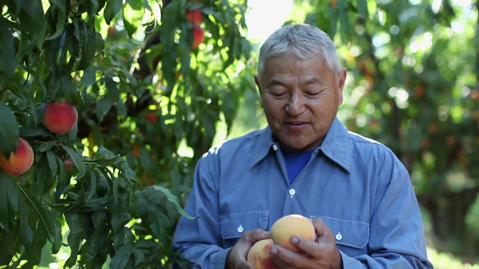 Mas Masumoto ,farmer and writer