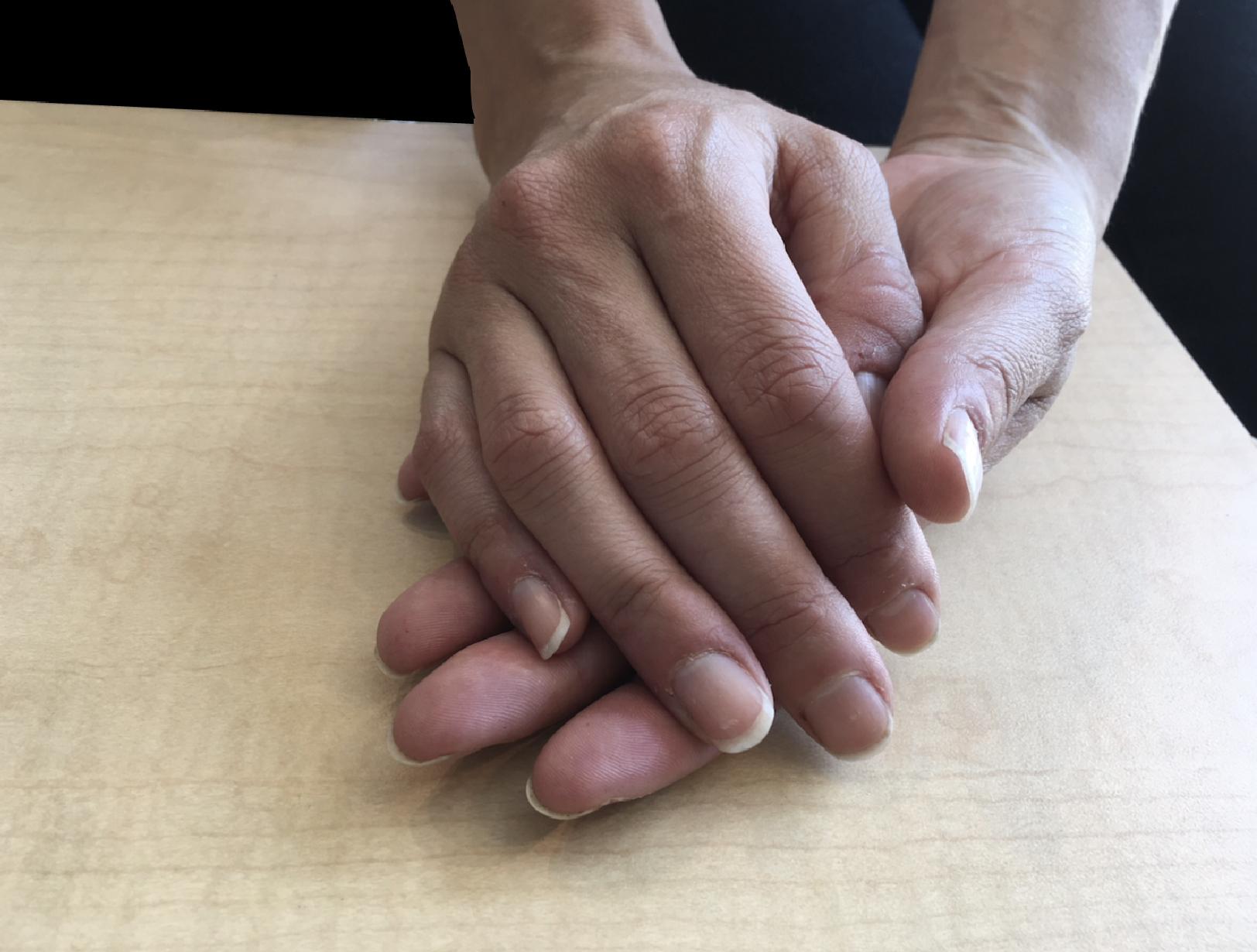 Photo of Melissa Cortona's hands, chef and butcher.
