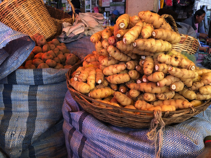 An example of challenge creating abundance and innovation. Some of Bolivia's 4,000 native potato varieties cultivated for their ability to withstand extreme elevation (over 12,000 feet) and cold. They are a revelation in taste and are nutritious too.