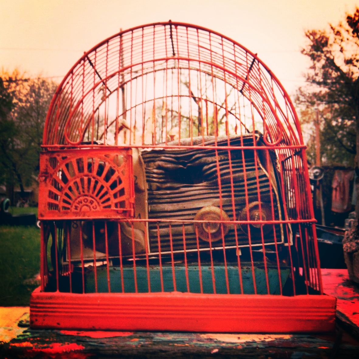 red cage.jpg