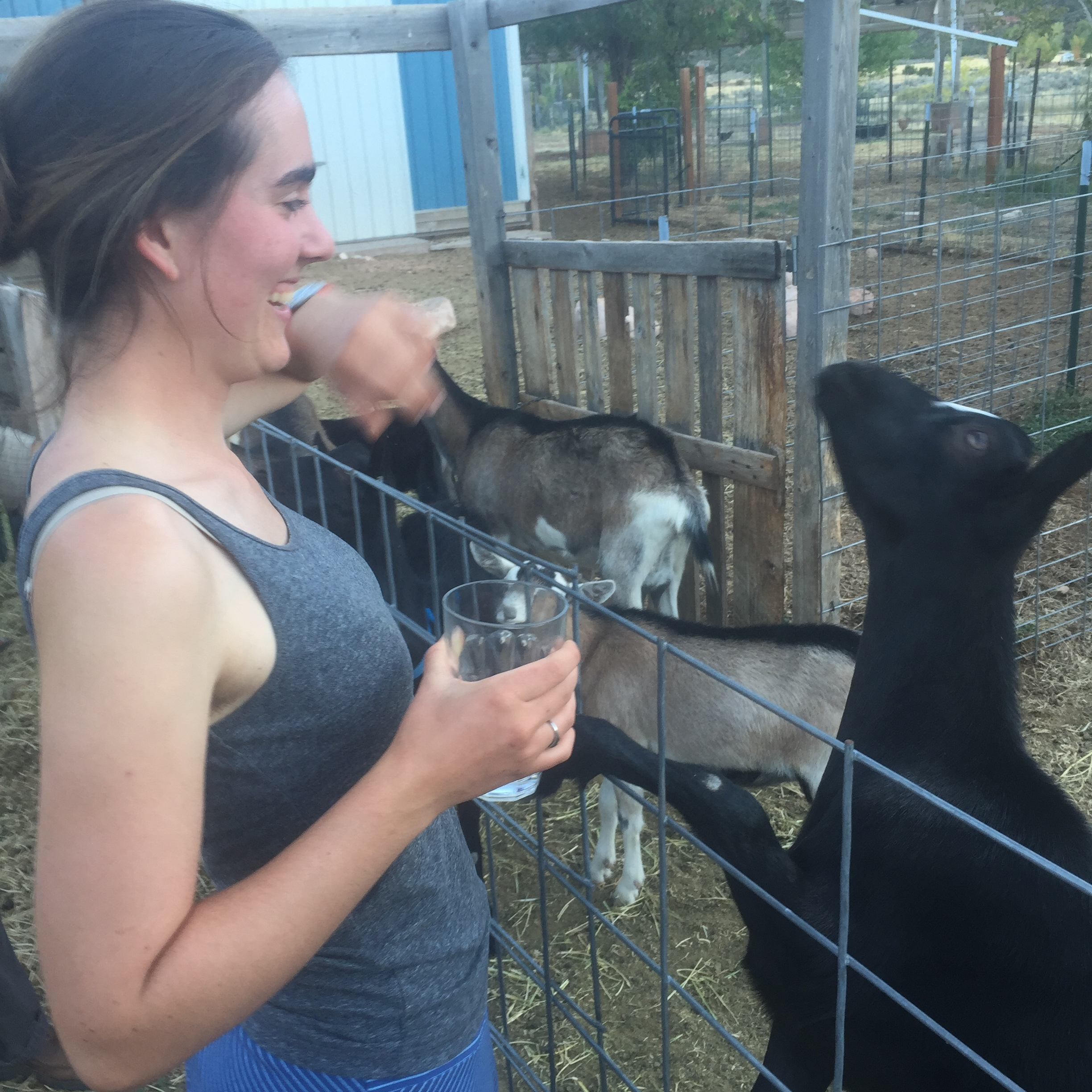 Sarah meets the goats of Castle Valley Creamery