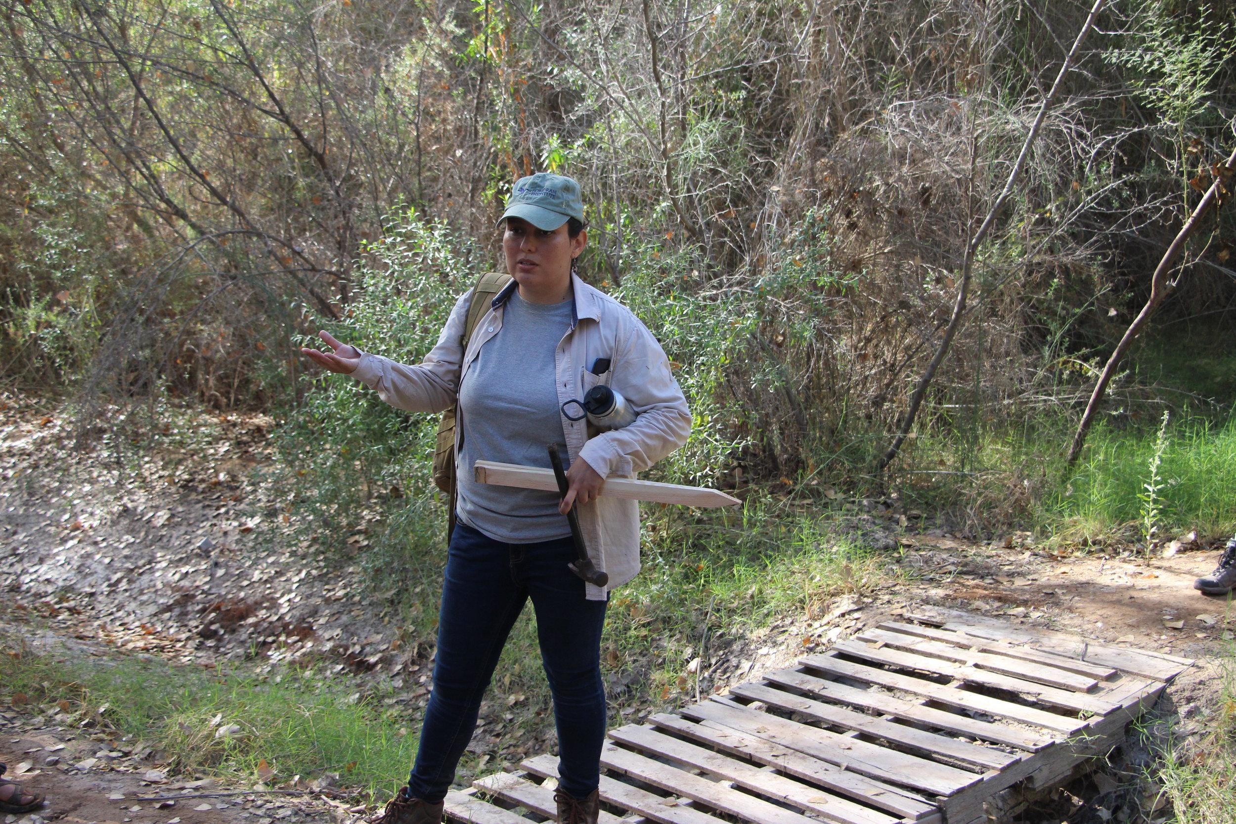 Helen Salazar Arteaya   Riparian Monitoring Coordinator, Sonoran Institute  Mexicali, Baja California