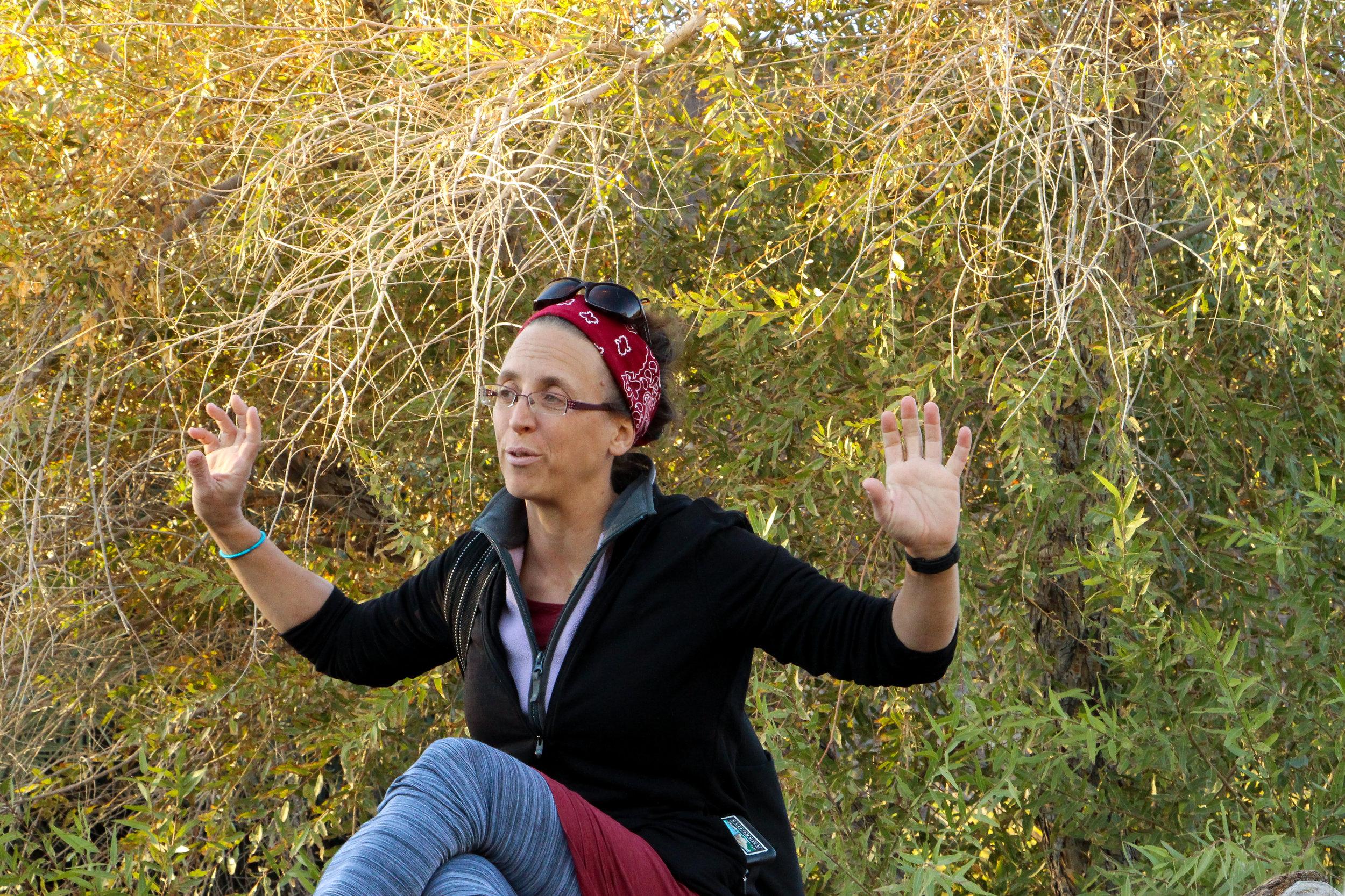 Tanya Henderson,    BIO    Executive Director,  Amargosa Conservancy   Shoshone, CA