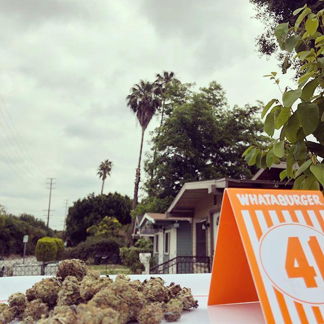 we need @whataburger in LA. ya'll are sleep