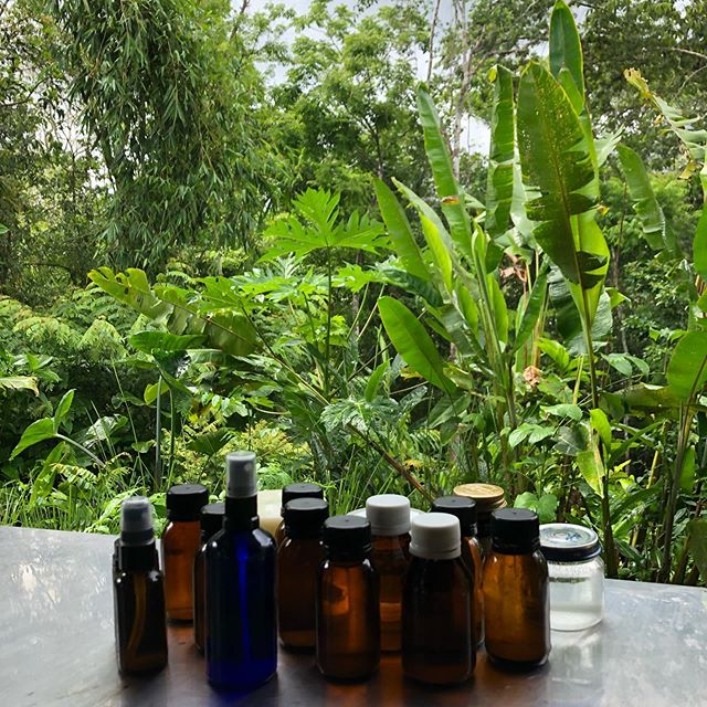 6 weeks ago I took a 4-day workshop on sustainable living at @ranchomastatal in Costa Rica. We learned how to make our own natural body butters, soaps, & shampoos, and we learned how to brew, ferment, and pickle. The experience of learning among a community so dedicated to living in harmony with nature (and deeply enjoying delicious, homegrown food) was very impactful for me. I'm excited to be going back again now to take a week long course on Syntropic Farming; a farming revolution grown out of Brazil which seeks to cultivate resilient ecosystems that are abundant, financially viable, and that heal abused land. This place is the real deal and for anyone interested in natural building, permaculture, or community living, I highly recommend checking them out. #naturenerd #costarica