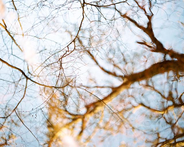 15_wintershoot_emilyscannell