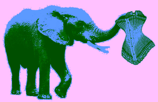 Digesting the Elephant in the Room - Fiction