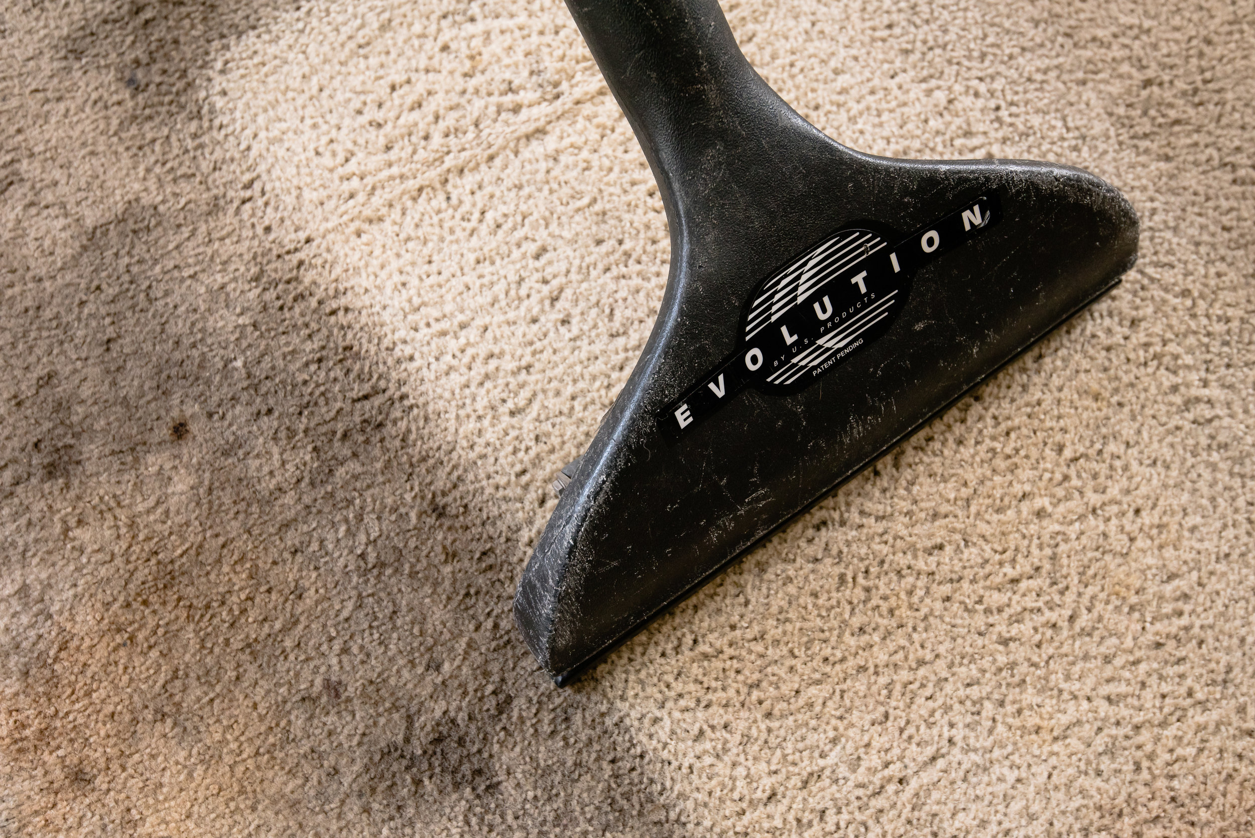 Carpet cleaning highly rated Shoreline