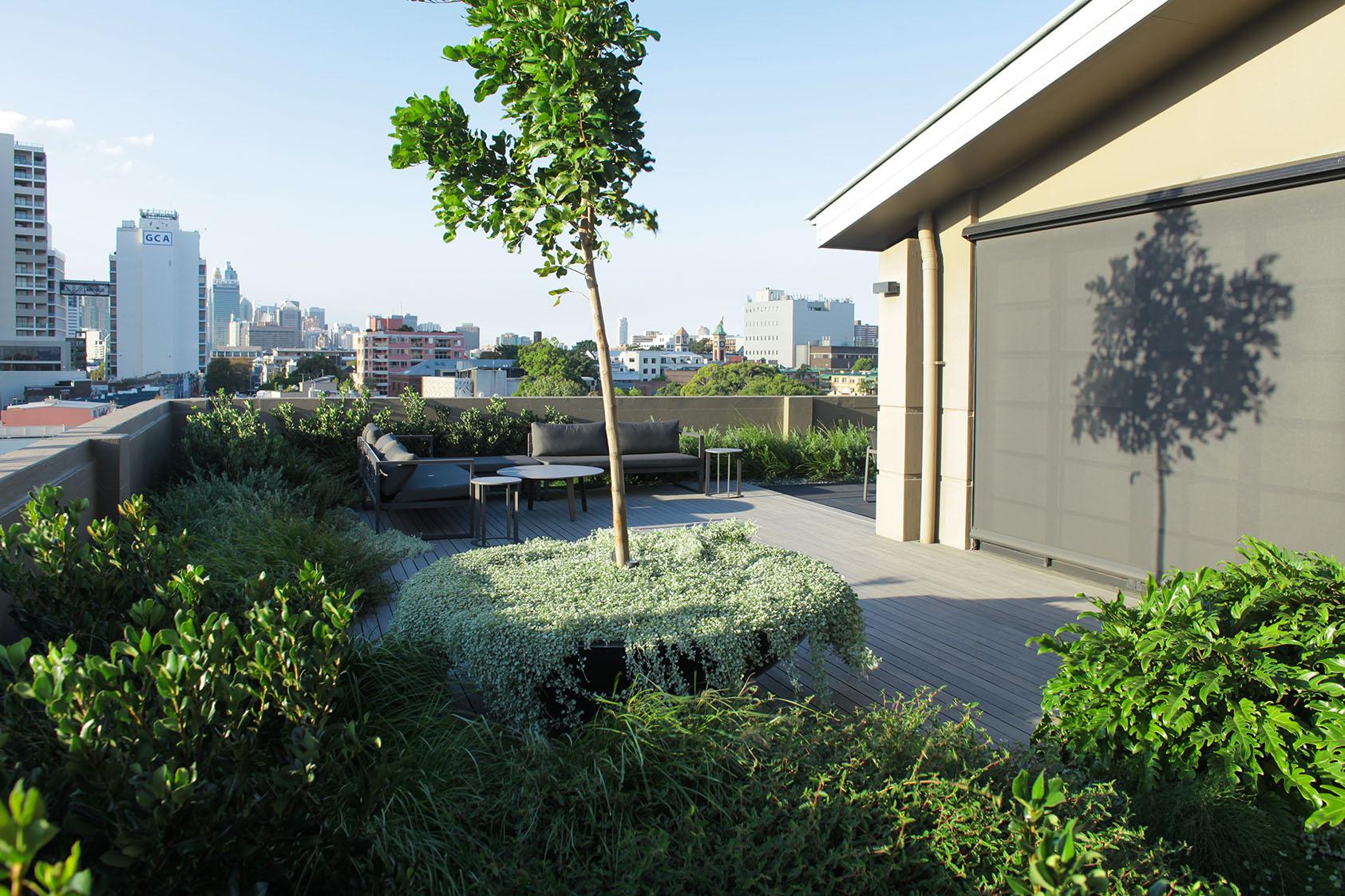 rooftop garden#courtyard#