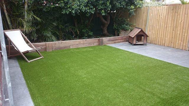 #greenlook77  #synthetic grass  #Royal grass #artificial grass #fake grass