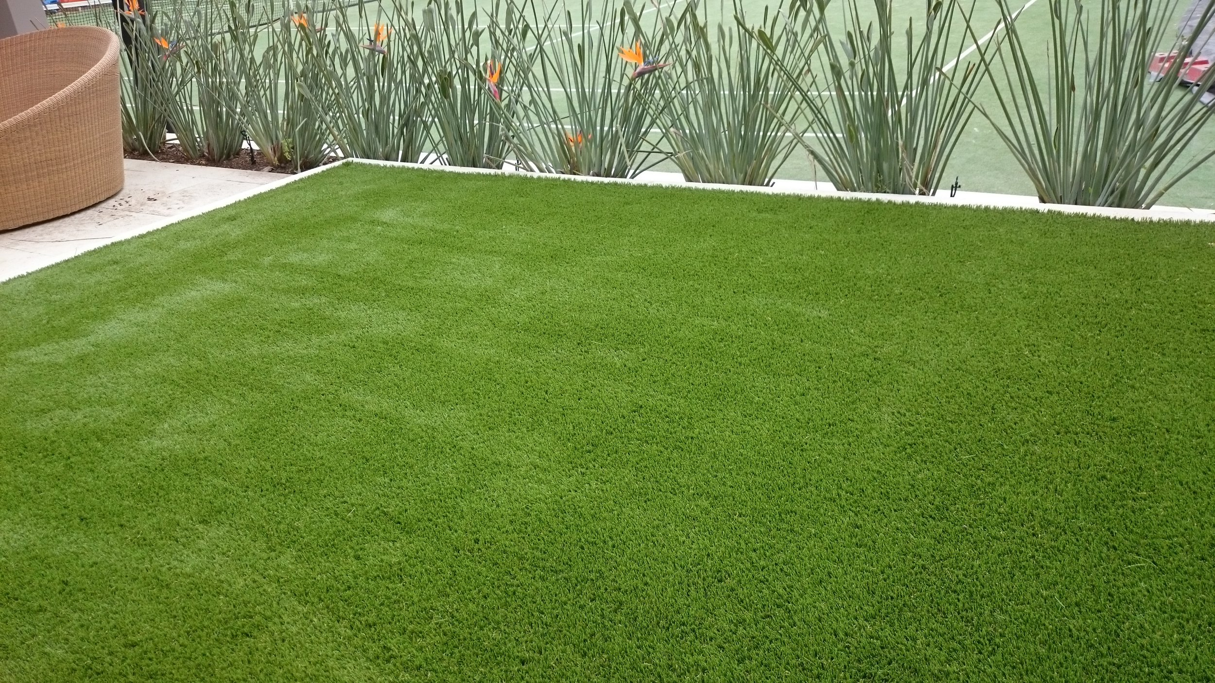 quality fake grass sydney#premium synthetic grass sydney#green look#royal grass