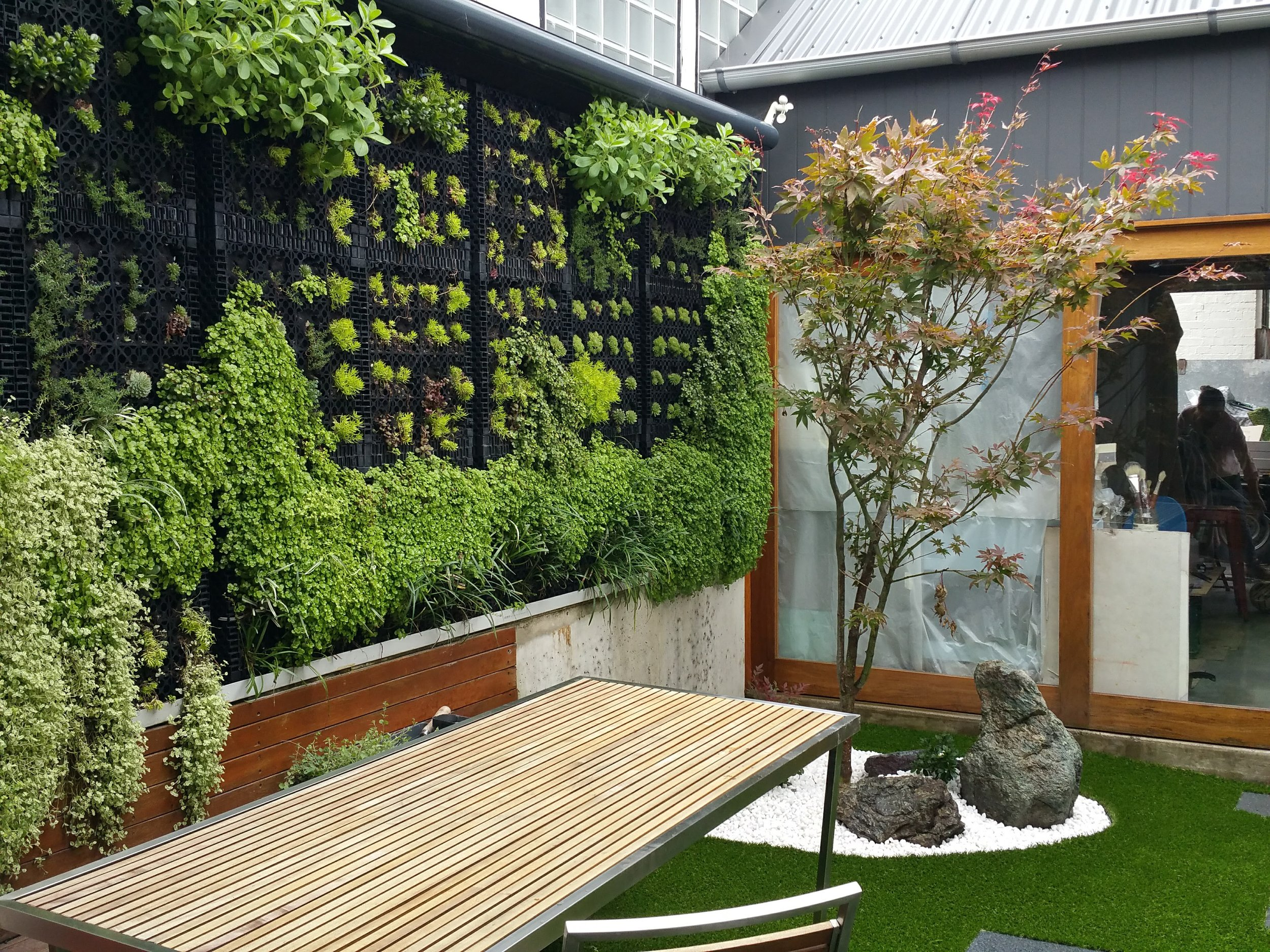This vertical wall gives this courtyard a lush leafy feel. Even a small space can feel like a large garden.  This courtyard was given a Japanese feel with the Japanese maple, Serpentine rocks and white quartzes.