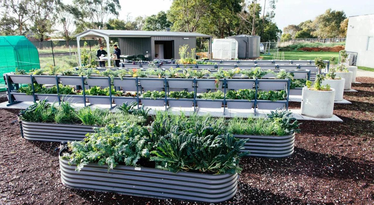 Biofilta Urban Farm Systems