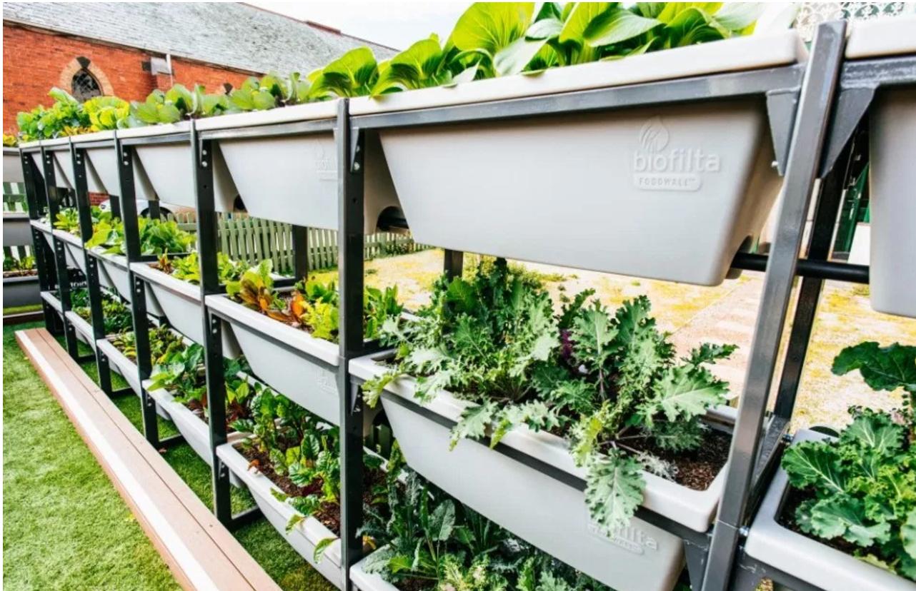 Urban Farming.