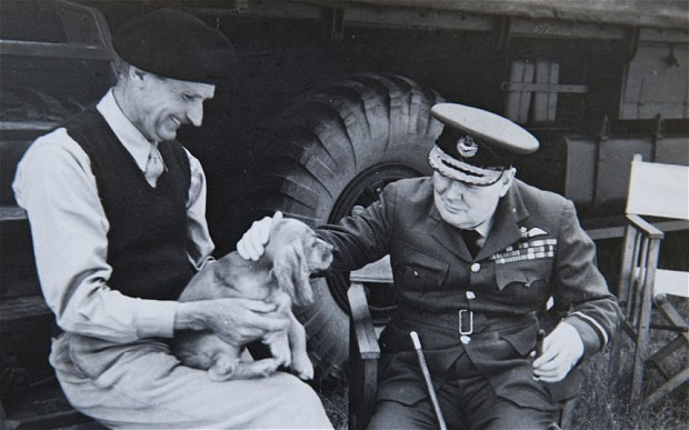 Churchill   patting Rommel, a cocker spaniel owned by   Monty   in Normandy in August 1944 on the caravan steps