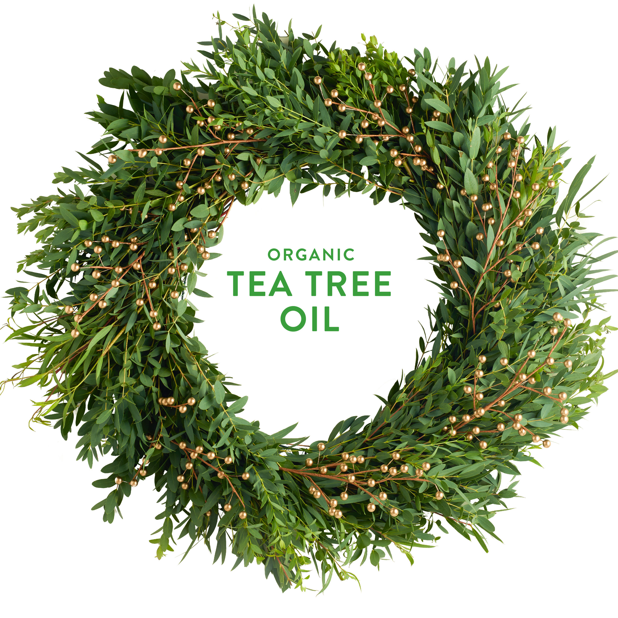 Wreath-TeaTree.jpg