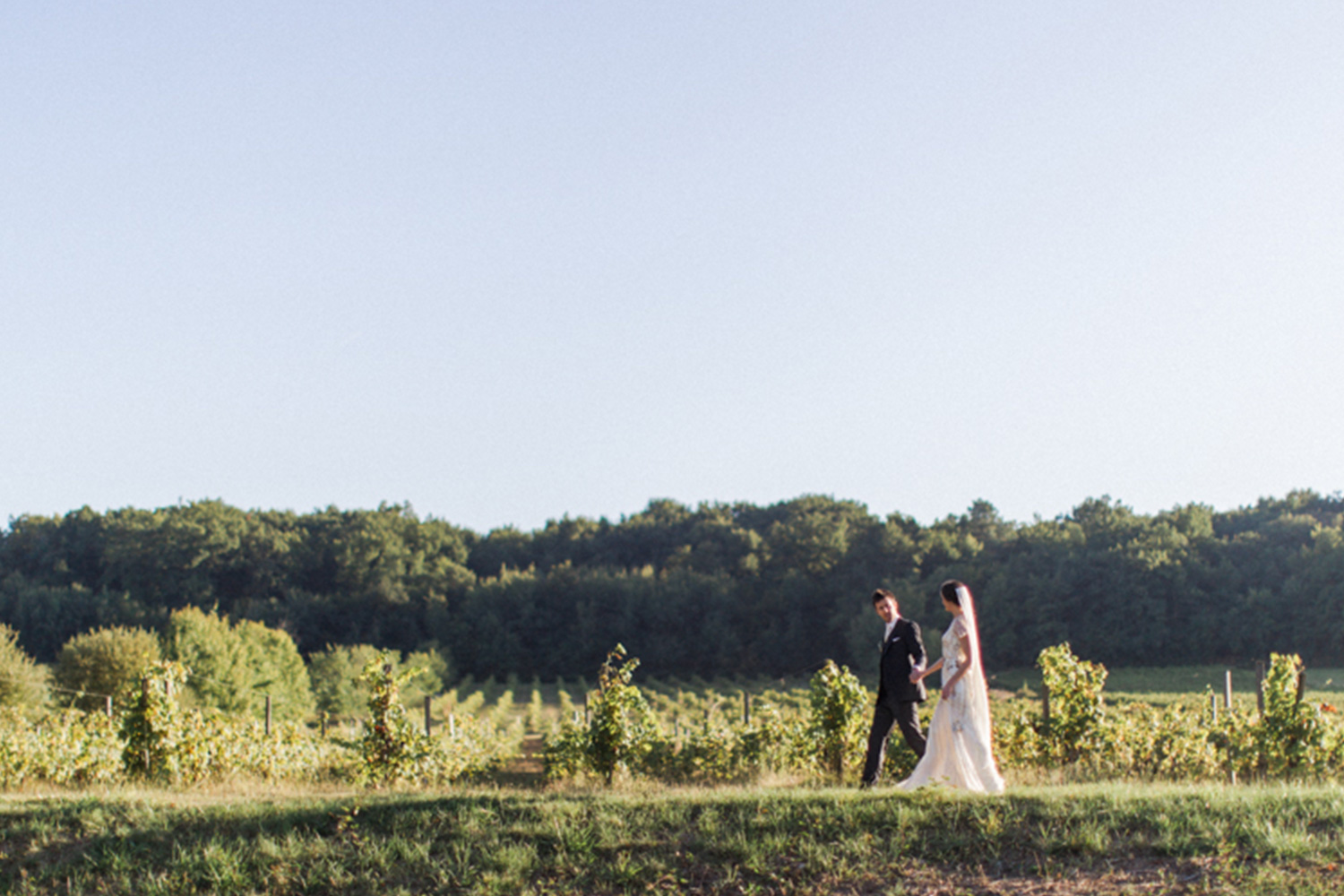 Autumn - The autumn evening light was perfect for these stunning shots of Jacqui in the vines, just after the harvest.