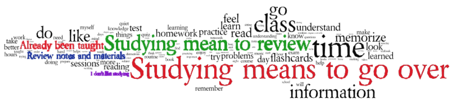 Figure 3. Frequency-weighted word cloud of most common words and phrases.