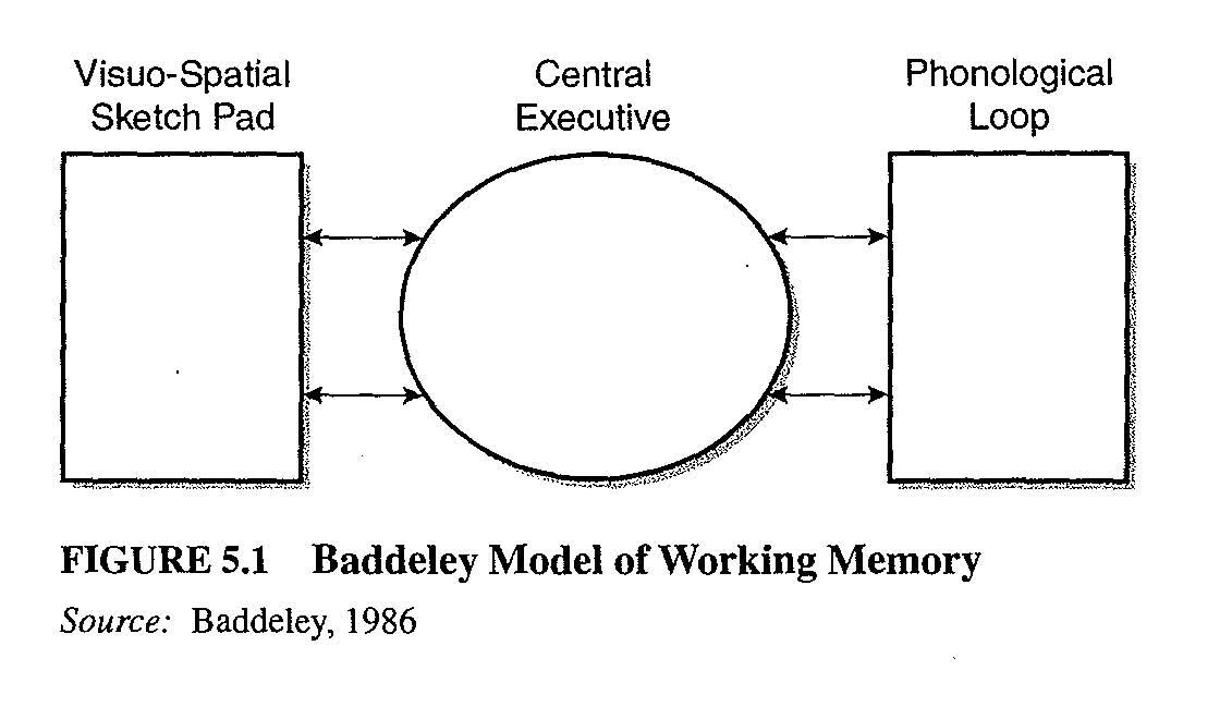 Baddeley_working_memory.jpg