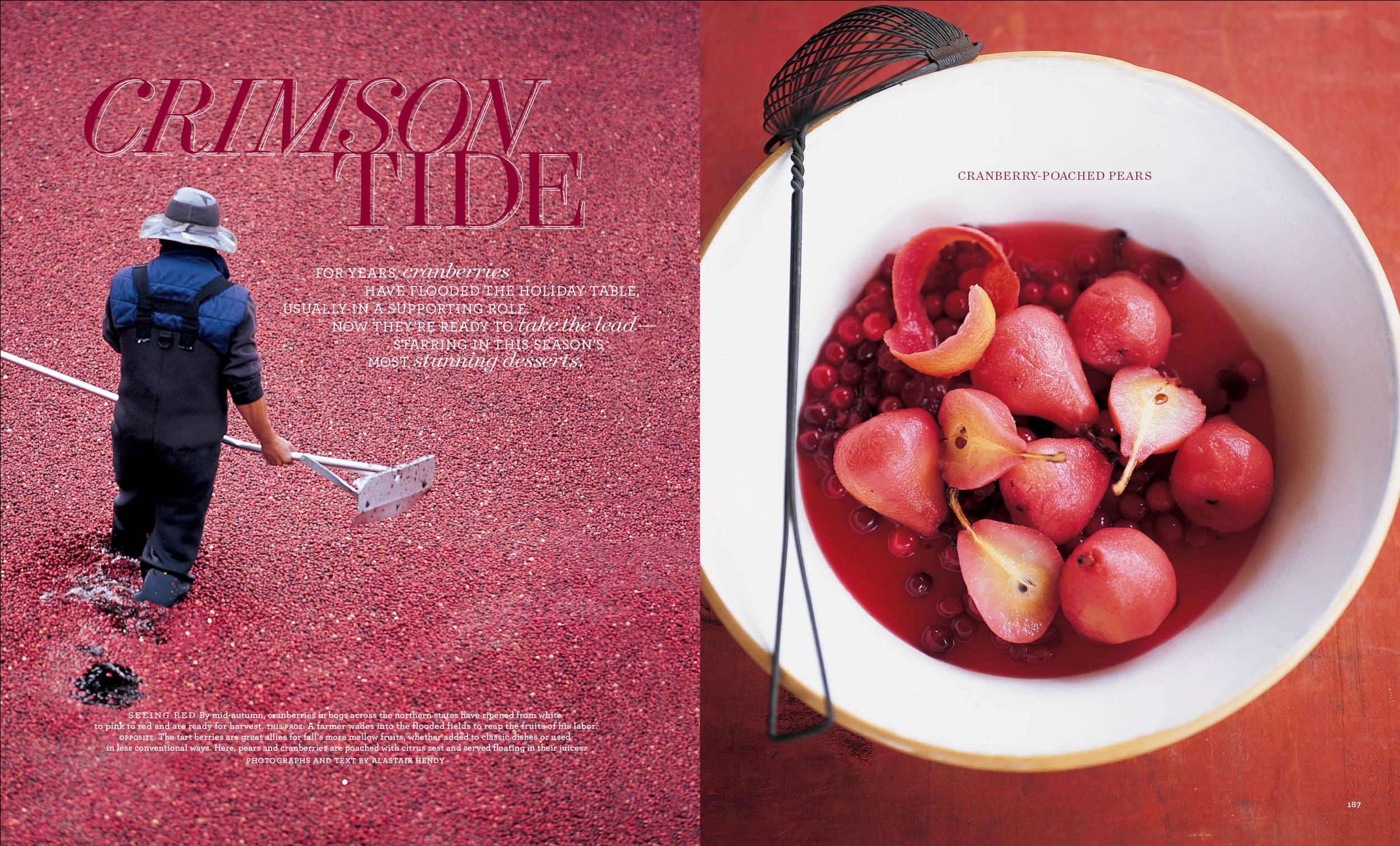 Cranberries copy.jpg