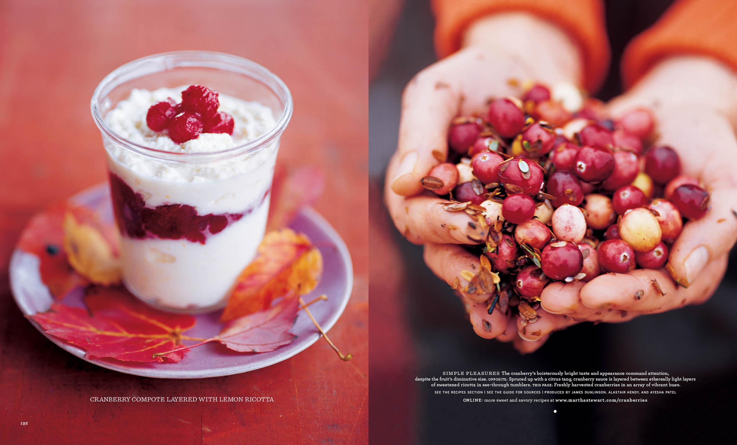 Cranberries4 copy.jpg