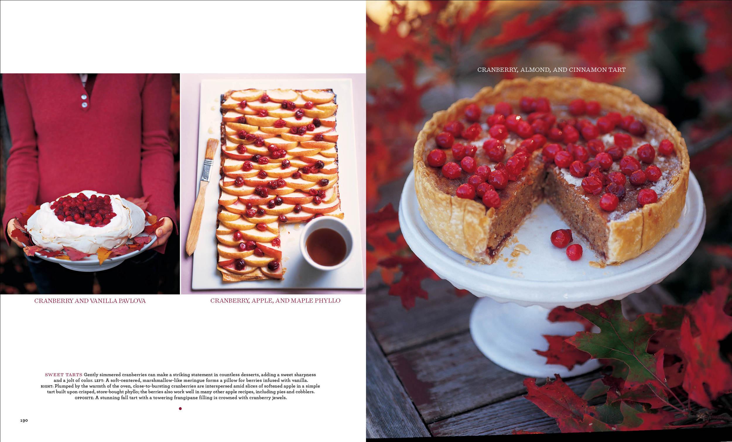 Cranberries3 copy.jpg