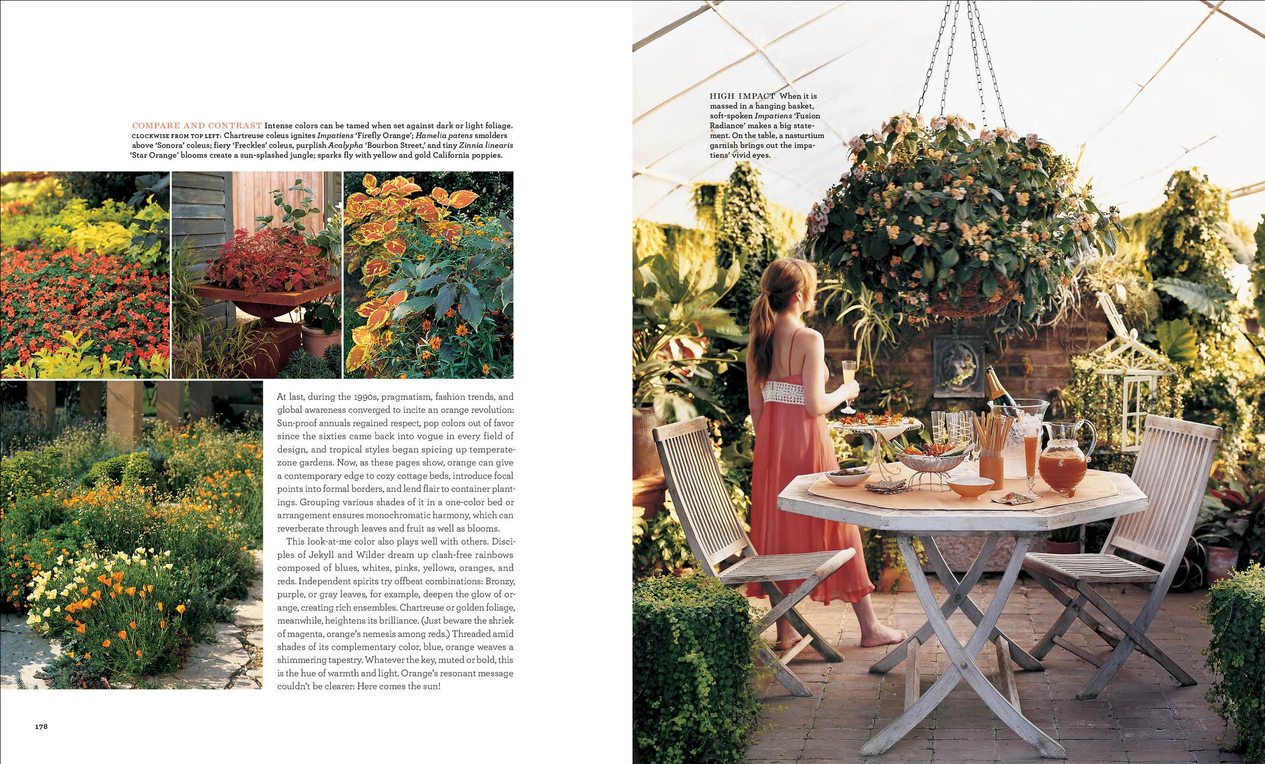 Orange Flowers2 copy.jpg