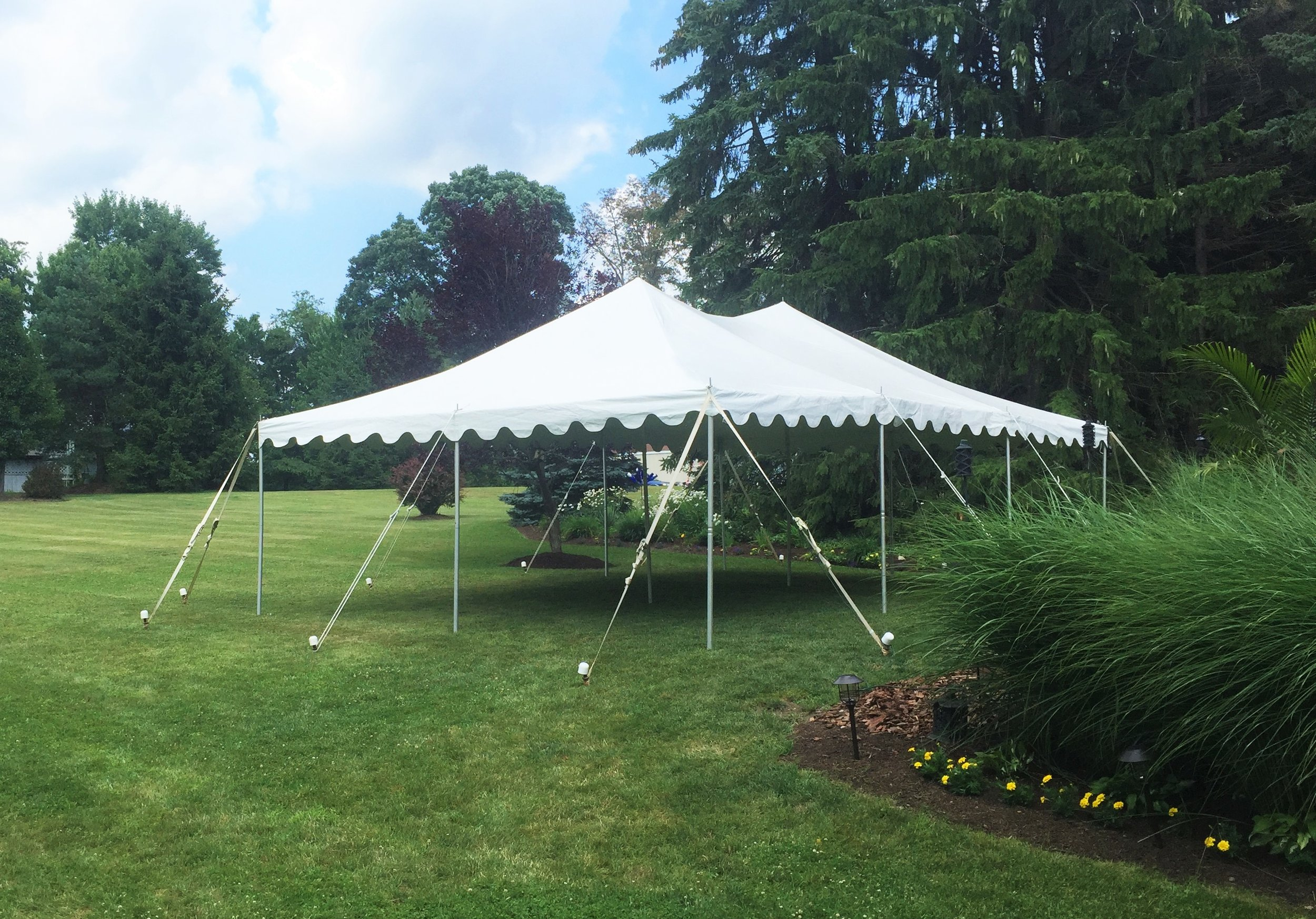 20' x 30' Canopy Tent