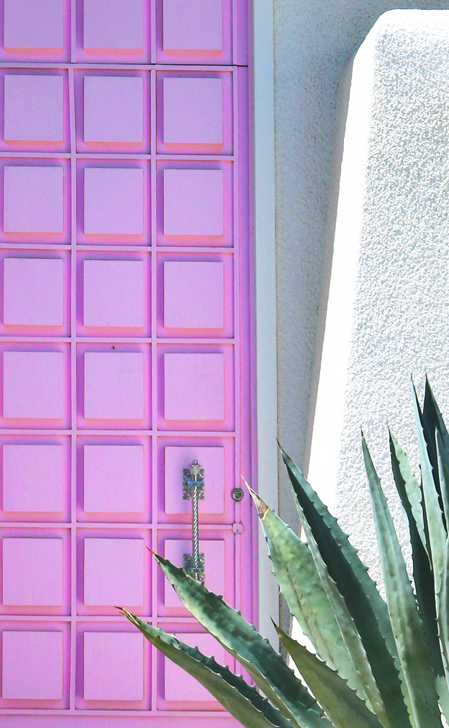 pink-door-palm-springs.jpg