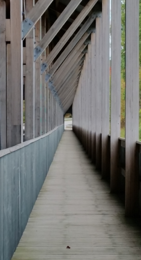 Keep your focus on the present, on God, on what he has for you. (My photo: Covered bridge,  Ashtabula County, Ohio )