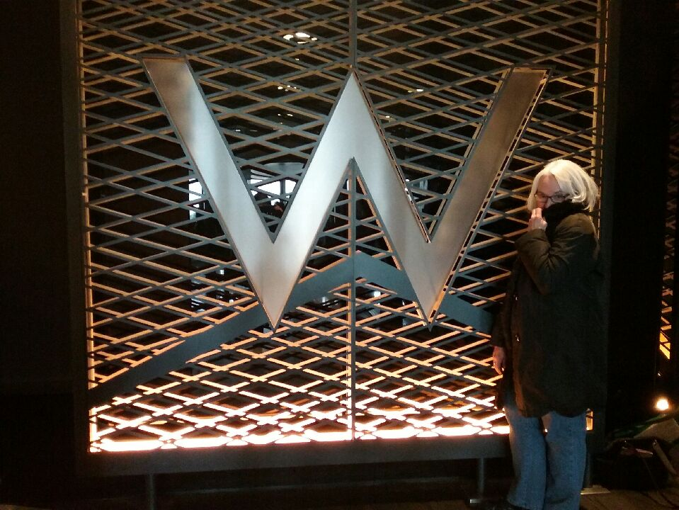 W Hotel, Chicago, Photo by Barb Dorris