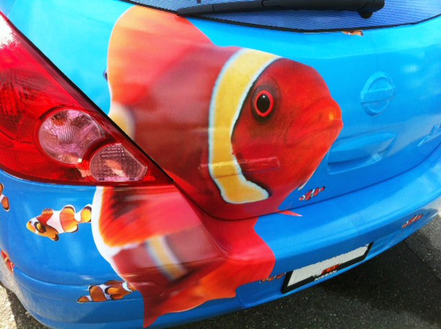 Car Wrap Nemo