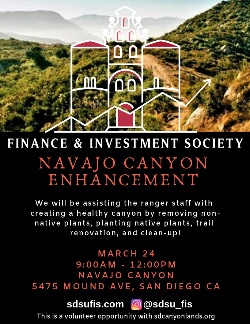 Navajo Canyon (1).png