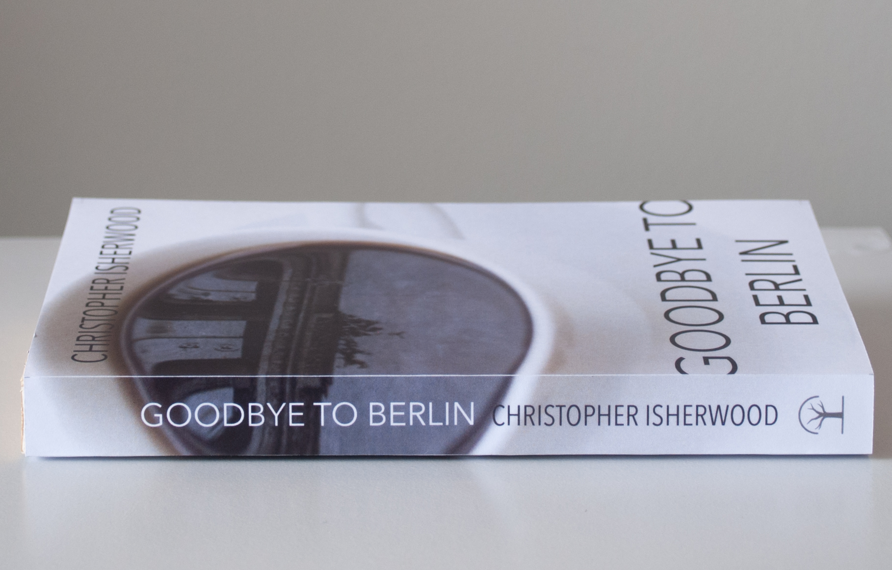 goodbye-to-berlin-holly-duun-spine.jpg