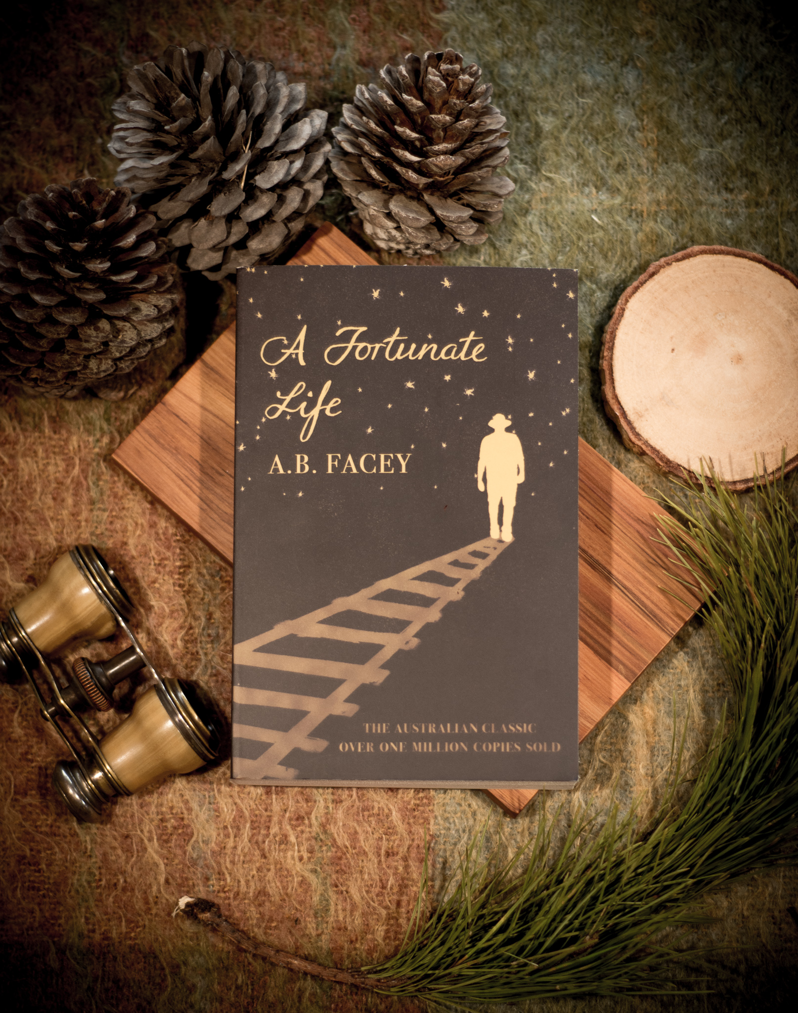A Fortunate Life - Fremantle Press, 2018I was contacted by Fremantle Press, a publisher in Western Australia. They had just regained the rights to one of their original titles, A Fortunate Life by AB Facey. This is an Australian classic, and with its return to Fremantle Press they decided to create three new editions of it, all with different target markets… [READ MORE]