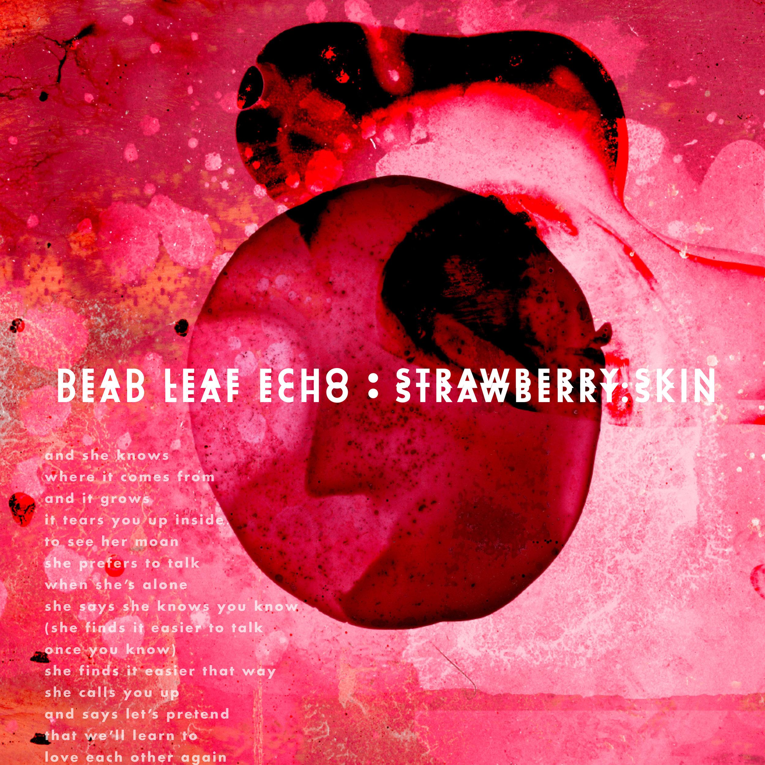 Strawberry_Skin_EP.jpg