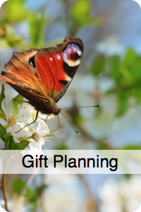 gift planning