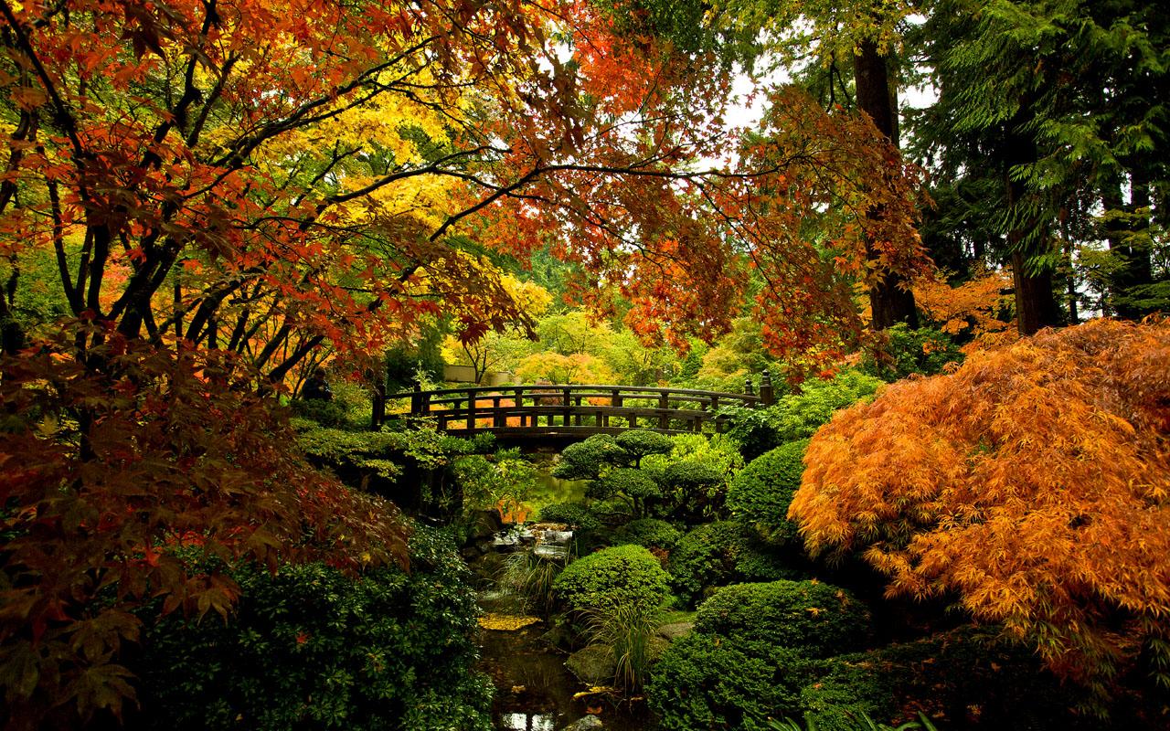 Portland Japanese Garden Washington Park Pada Portland Art