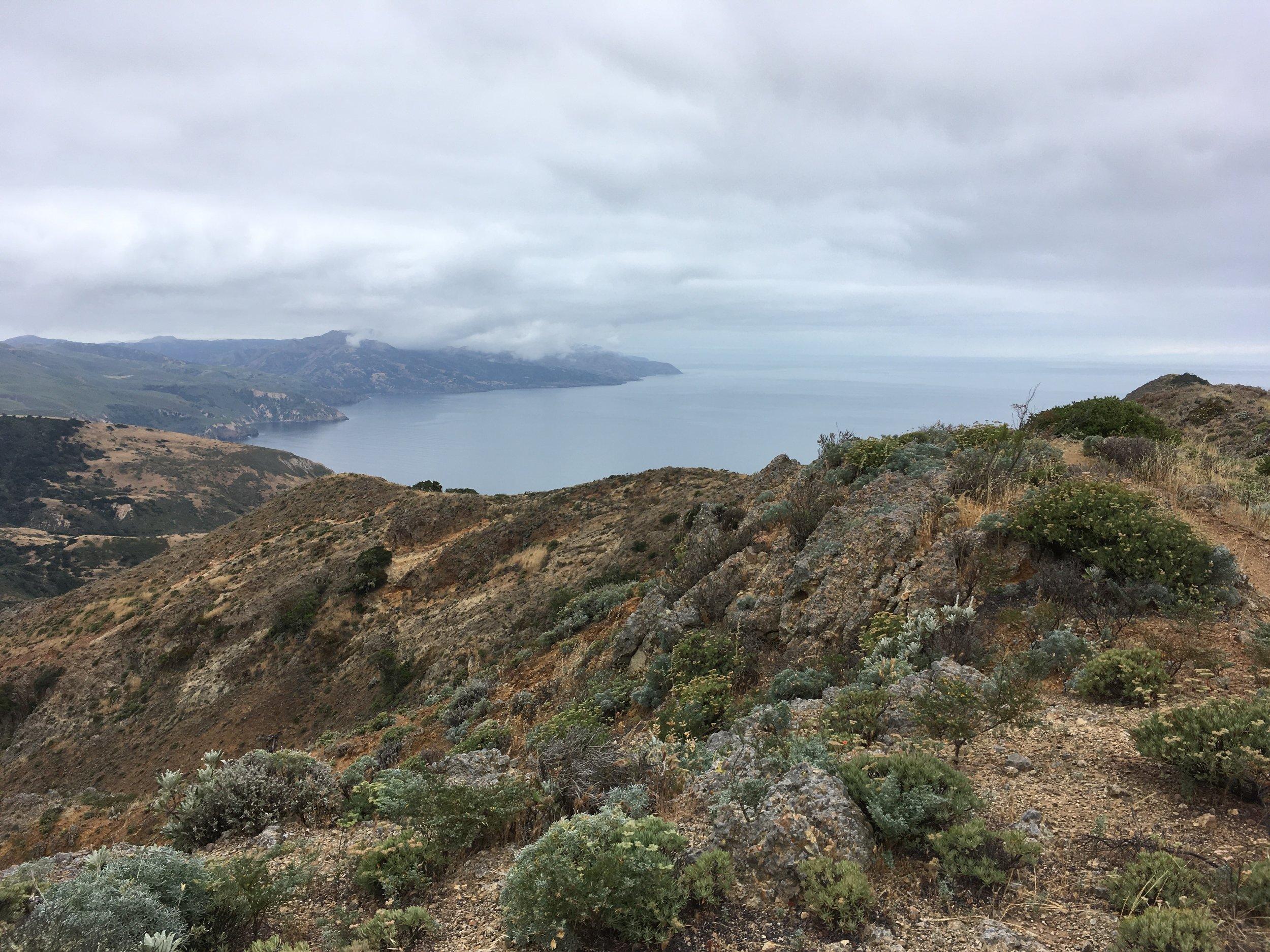 california floristic province - 2017