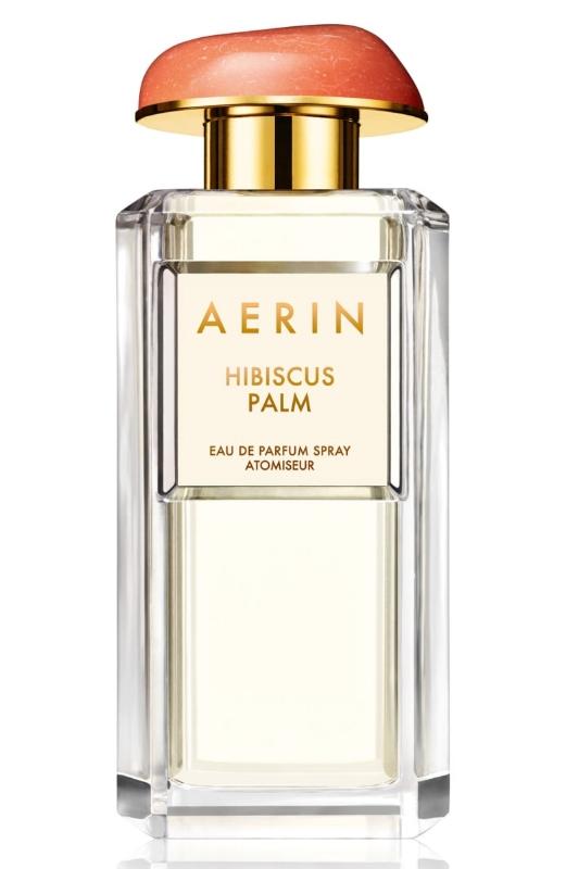 Aerin   Hibiscus Palm
