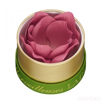 Les Merveilleuses Laduree   Face Color Rose