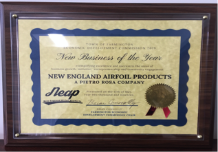 Business-of-the-year-award-NEAP.png