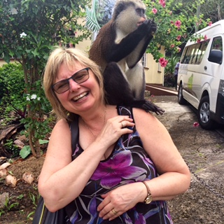 This Mona Monkey was on the welcoming committee when Doreen arrived in Grenada for the Chocolate Festival.