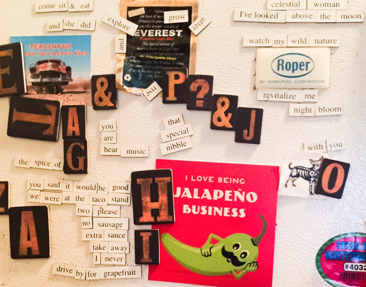 Fridge art, curated by Heather Holland