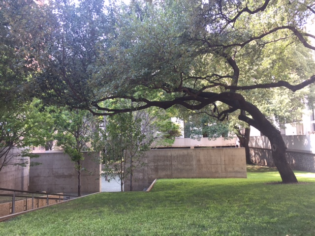 The 2017 location of the Dallas Chocolate Festival was breath taking. Sprawling oak branches invite you to enjoy the modern outdoor patio space at the F.I.G.