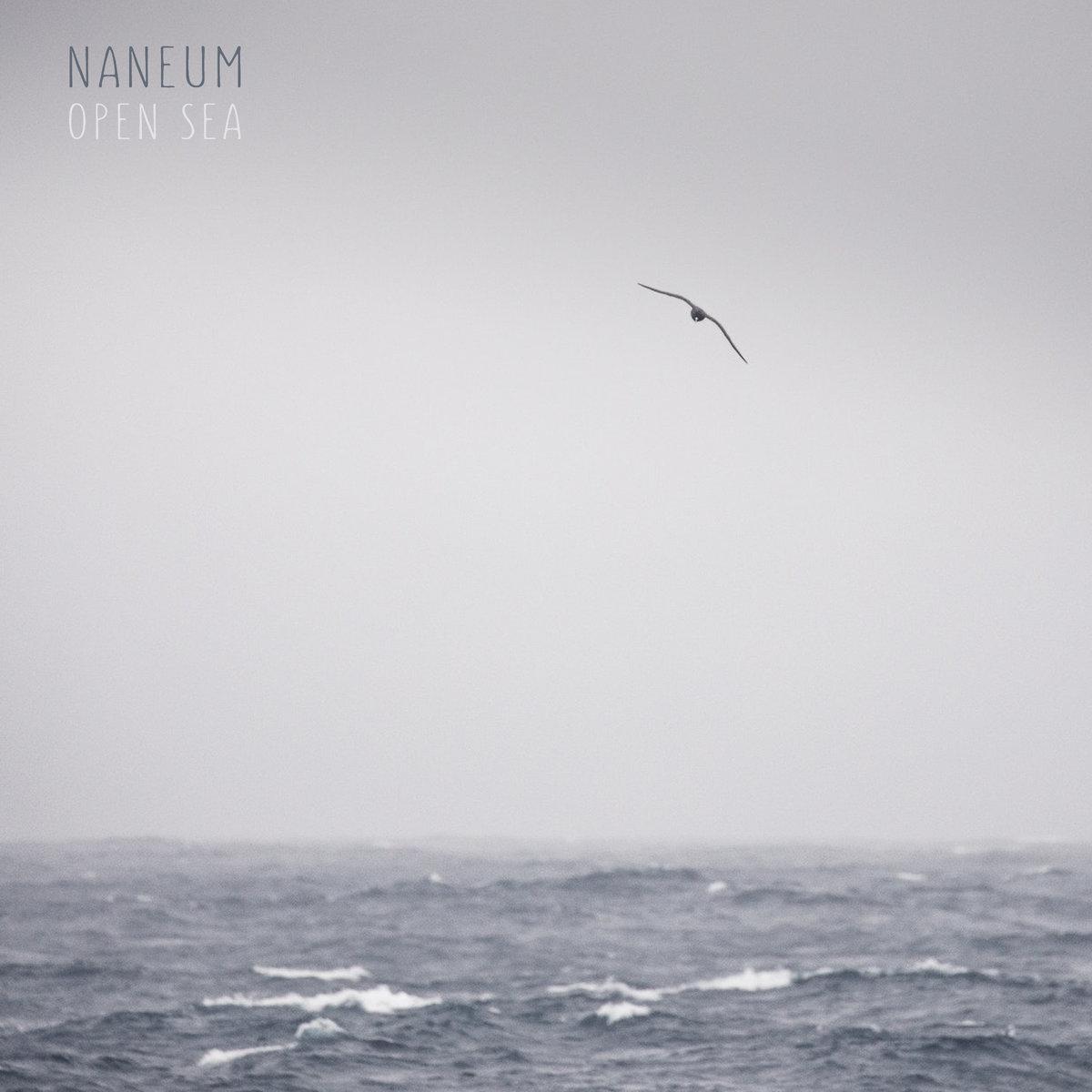 Album cover for Open Sea