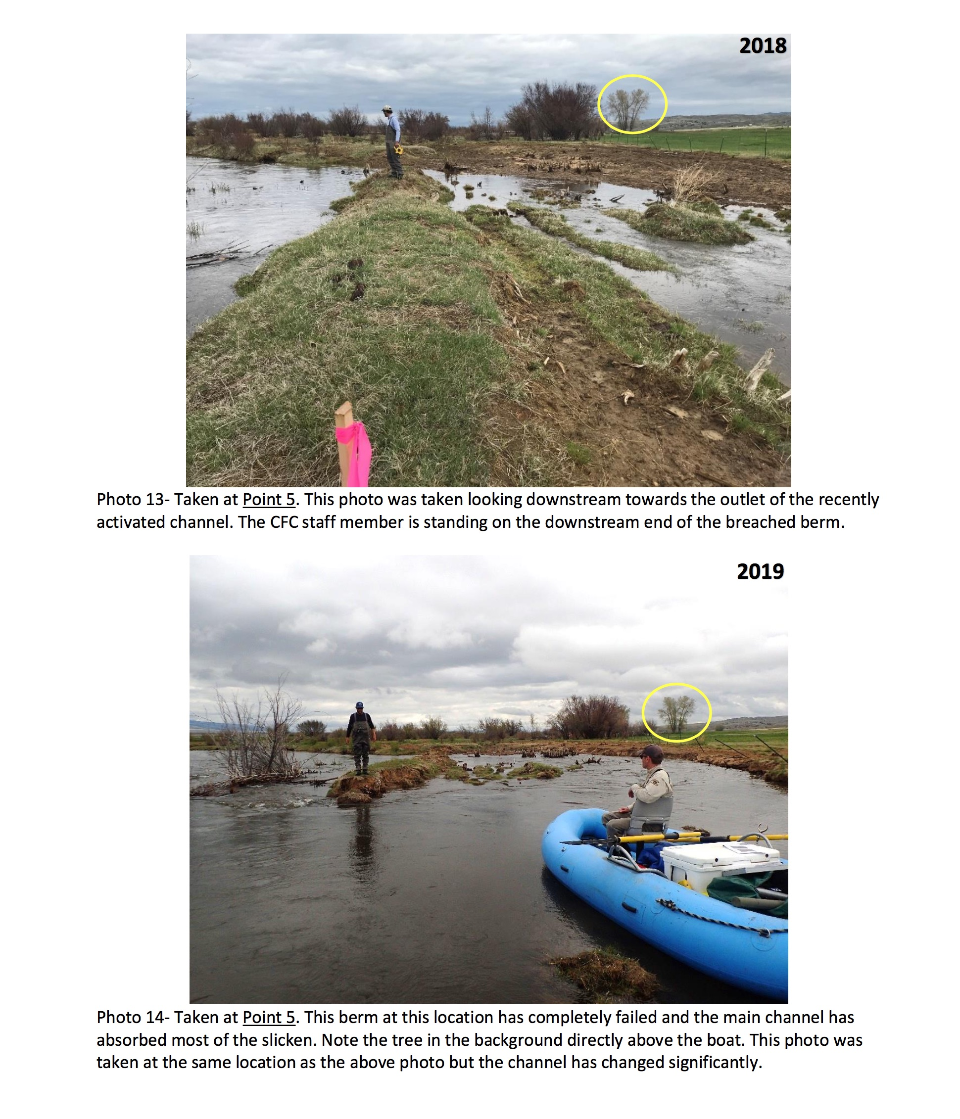 This excerpt from a Clark Fork Coalition report shows how dramatically the river can change course over the span of a year.