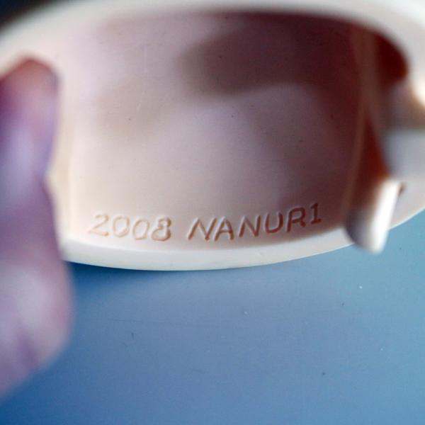 nanuri08back.JPG